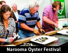 ActewAGL – Win 2014 Narooma Oyster Festival Competition