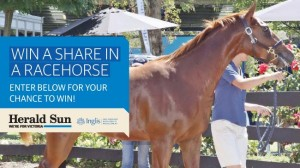 Herald Sun – Win a ten per cent share in racehorse purchased at the Inglis Premier Yearling Sale valued up to $100,000