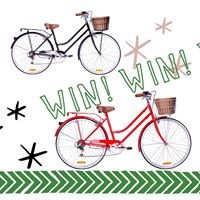 Live it. Do it blog – WIN 1 of 2 vintage inspired bikes