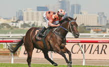 Triple M – Win a Flemington Races package including one nights accommodation