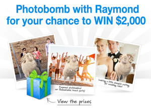 Raymond A Ram – Win $2,000 or a BBQ or thongs – Photobomb Competition