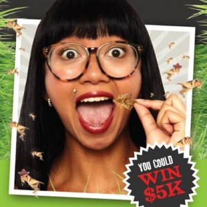 Salsa's Fresh Mex Grill – Eat a cricket! Win $5,000
