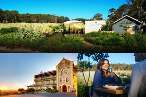 James Halliday Wine Companion – Win a luxury getaway to the Adelaide Hills. Travel not included