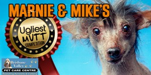 River 949  – Win Marnie & Mike's Ugly Mutts *Show finalist dogs in Studio