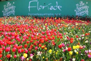 Bauer Media Group – Win a trip to Floriade in Canberra