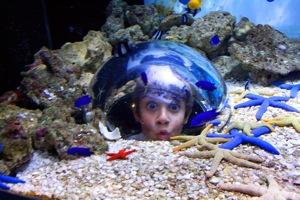 Child Magazines – Win 1 of 8 Family tickets to Sea Life Mooloolaba