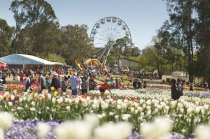 Mouths of Mums – Win a trip to Srping Extravaganza in the Nations Capital