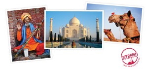Channel Ten – Win a trip to Delhi, India for The Second Best Exotic Marigold Hotel with Intrepid Travel