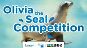 Herald Sun – Win 1 of 24 prize packs including Melbourne Zoo and tickets in AGL Zoos Victoria Olivia the Seal valued total at $4,914