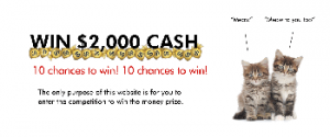 AAMI Cash Kittens – Win 1 of 10 cash prizes valued at $2,000 each