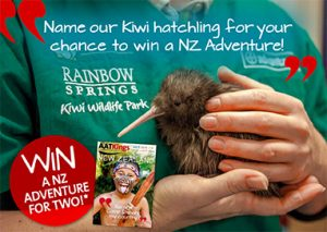 AATKings – Name our Kiwi – Win a trip for 2 to New Zealand valued up to AUD$7,500