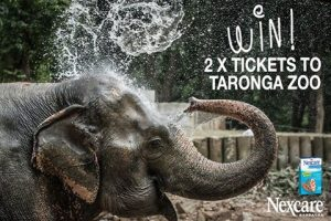 NexcareTM Brand – 3M Australia – Win 1 of 5 double passes to Taronga Zoo