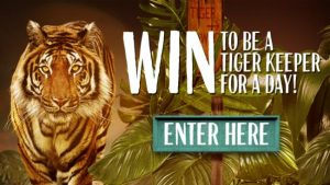 Nationwide News – The Daily Telegraph – Win to be a Tiger Keeper for a day at Taronga Zoo Sydney OR 1 of 100 family passes