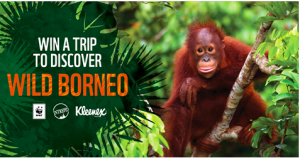 World Wild Fund – Meet the Family Borneo Orangutan – Win a trip for 2 to Kota Kinabalu on a 12-day Sabah Adventure Expedition valued at $8,600
