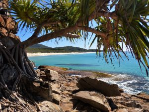 Australian Tourist Park Management – Win a 7-night stay at any of the 5 Macleay Valley Coast Holiday Parks