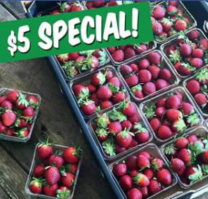 Charlie's Fruit Market – Win a tray of strawberries