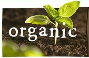 MyOrganics – Win 1 Of 3 Myorganics Packs
