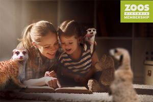 RACV M-R paid – Win The Ultimate Zoo Experience (prize valued at $3,486)