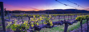 HGX Beautiful Accommodation – Win a Gourmet Getaway for 2 to the Victorian Goldfields valued at $1,075