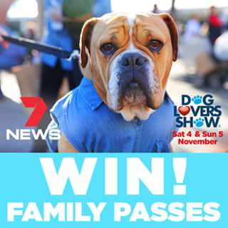 Channel 7 Qld – Win a Family Pass to this Year's Dog Lovers Show