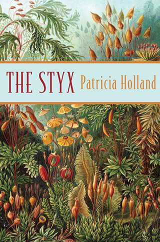 Good reading – Win One of 5 Copies of 'the Styx' a Stunning Contemporary Fiction Novel By Patricia Holland