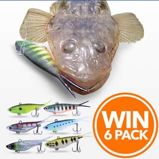 Mad Keen Fishing – Win a Quivers (6) Pack Value $89.00 (prize valued at $89)