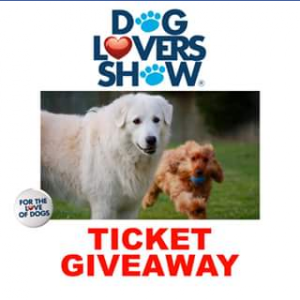 The Great Day Out – Win One of Five Double Passes to Dog Lovers Show Brisbane