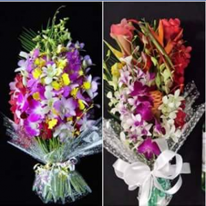 Majestic Orchids – Win Our Bouquet (colours May Vary to Photo) Can Be Delivered Locally Or Australia Wide(except Wa).