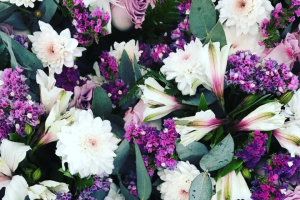 The Daily Blossom – Win a Daily Blossom Delivery