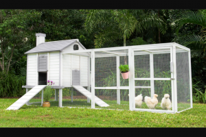 Backyard Chicken Coops – Win a Chicken Coop Package Today (prize valued at $1,600)