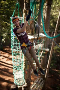 Hollybank Treetops Adventure – Win a Family Pass to Our Trees Adventure Ropes Course (prize valued at $172)