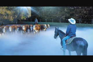myGC – Win Tickets to Australian OuTBack Spectacular