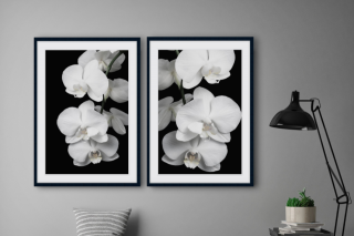 The Weekly Review – Win a 50cm By 70cm Framed Art Print (prize valued at $379)