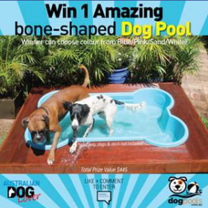 Australian Dog Lover win one bone – Win One Bone-Shaped Pool to Keep Them Cool and Entertained All Summer Long (prize valued at $445)