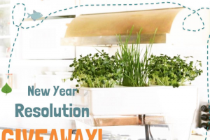 fluidgrowers – Win a Water Garden — Feed The Plants