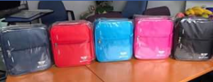 Mum to Five – Win a Fridge-To-Go Medium Lunch Bag Valued at $40.95 (prize valued at $40)