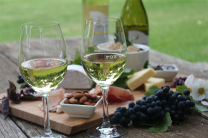 Adelaide Review – Win a Fox Creek Wines VIP Experience (prize valued at $530)