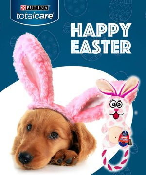 Purina Australia – Win 1 of 12 Total Care Easter Bunny toys
