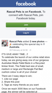 Rascal Pets – Win a Pet Bed (prize valued at $1,100)