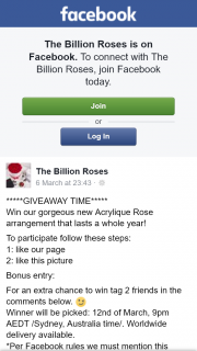 The Billion Roses – Win Our Gorgeous New Acrylique Rose Arrangement That Lasts a Whole Year