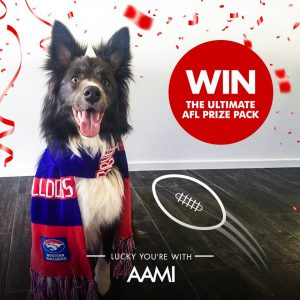 AAMI – Pets of AFL Fan Pack – Win 1 of 3 prize packs