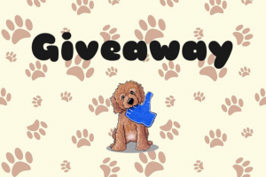 Dog Hamper – Win a Dog Hamper Full of Yummy Treatstoys Plus More