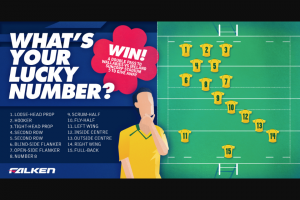 Falken Tyres – Win 1 of 5 Double Passes to See The Qantas Wallabies V Ireland