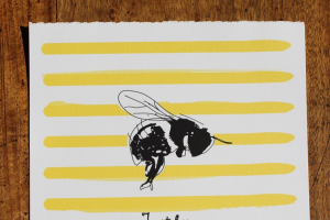 Kymba Illustrator – Win a Kymba Just Bee Illustration 300x300mm Giclee Art Print With Archival Pigment Inks on 300gsm ArTBoard