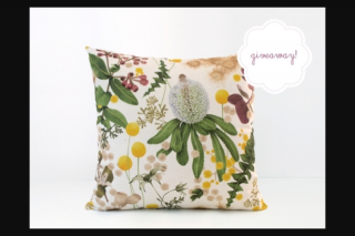 Frankie – Win Cushions By Louise Jones