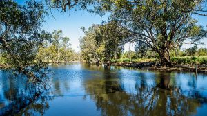 SBS – Win a Grazing Down the Lachlan foodie adventure in Forbes, NSW with Mark Olive valued at $5,000