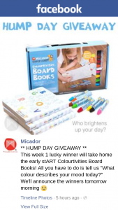 Micador – Will Take Home The Early Start Colourtivities Board Books