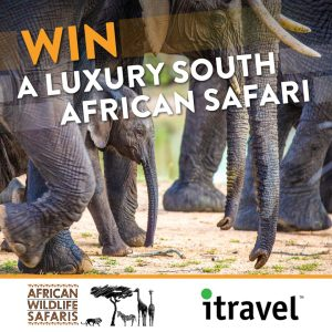 African Wildlife Safaris – Win a 12-day adventure for 2 exploring the diversity of South Africa valued at up to $29,999