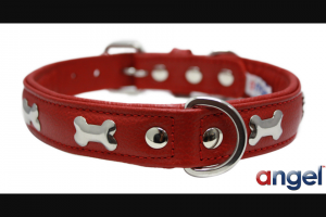 Angel Pet Supplies – Win an Angel Pet Classic Rotterdam Bones Red Dog Collar