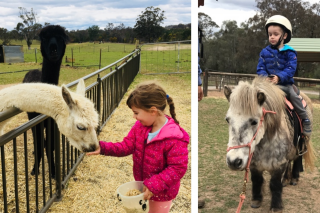 Mouths of Mums – Win a Full Day Visit (worth $230) for 2 Adults and 2 Children to this Wonderful Working Farm